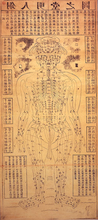 acupuncture-chart