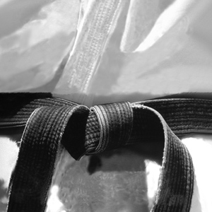 Black Belt Roles and Responsibilities