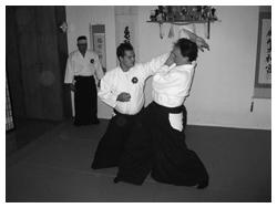 Daito Ryu Aiki Bujutsu