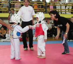 Martial Arts is Great for Kids!